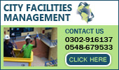 City Facilities Management Limited