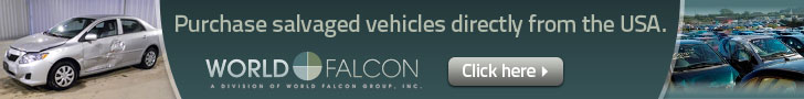 World Falcon Limited