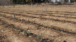 Farms will be irrigated all-year with the coming in force of the policy