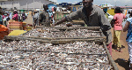 Marine fish stock at the verge of collapse due to over-exploitation