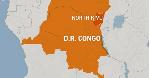 Suspected Ugandan rebels kill 10 in eastern DRC - Army