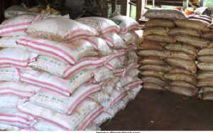 Fertilizer Bags