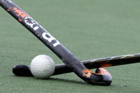 File Photo:Hockey sticks