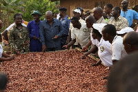 Dr Opuni with President Mahama when they visited some cocoa farming areas