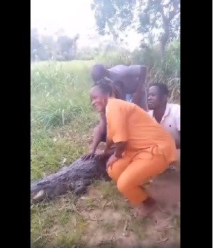 All was going well for the tourists until one of them touched the reptile on its side