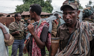 Amhara borders Tigray to the south, and the two regions are embroiled in a decades-old land dispute