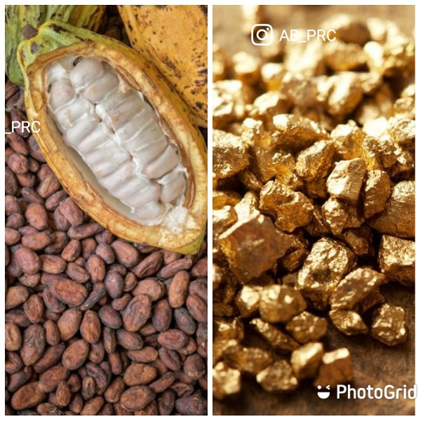 Child Labour: Ghana and Cote d'Ivoire urged to mend cocoa slavery slur