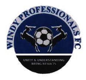 Download (4) Windy Professionals FC.jfif