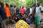 Cocoa Barometer 2020 demands system change to end cocoa poverty