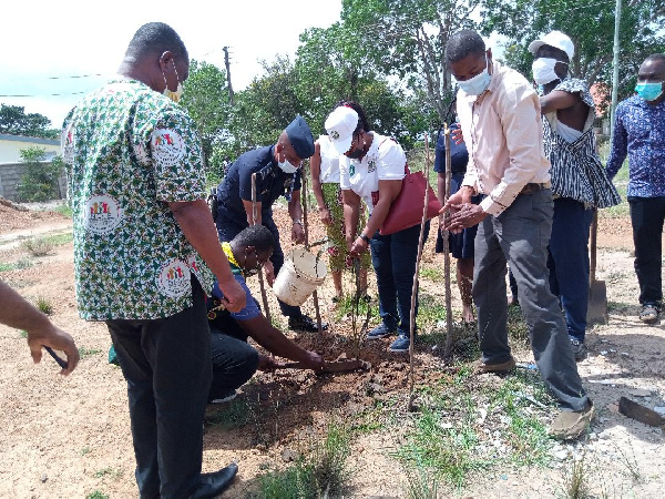 NCCE Directors help in planting the trees