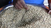 Mumbere's coffee production   -   Copyright © africanews Africanews