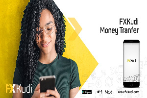 FXKudi gives access to Borderless Money Transfer and Power to Pay Online.
