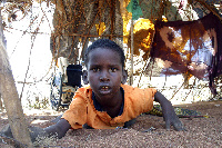 A physically challenged child [File photo]