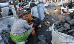 Look for alternatives - Charcoal dealers told