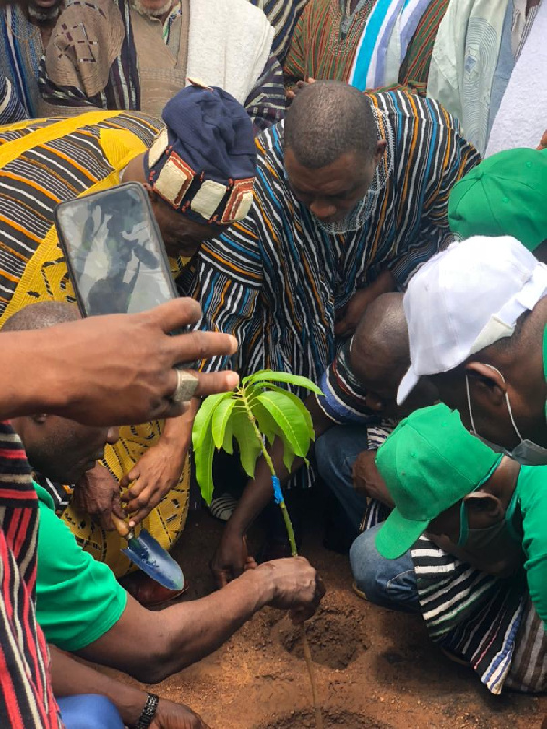Ya-Na commends government for instituting Green Ghana initiative