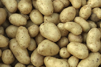 The Frafra potatoes are sugar free and very nutritious.