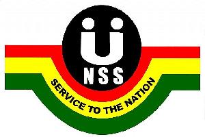 Nss Logo2
