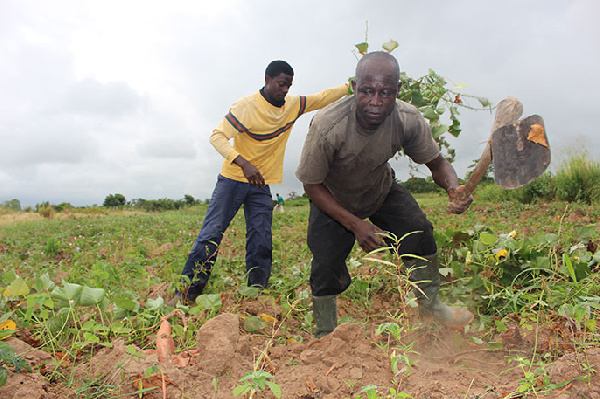 Farmers advised to practise Integrated Soil Fertility Management