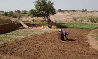 A woman is seen tending to the soil on a farm
