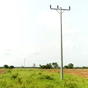 Electricity Pole 642