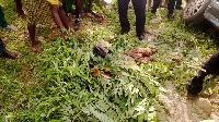 Boy crashed to death
