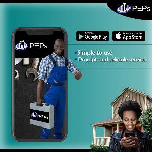 Service providers from PEPs can be trusted to provide your property with reliable services