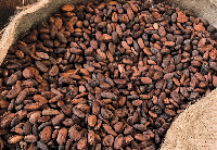 File photo: The community police assistant allegedly stole six bags of dried cocoa beans
