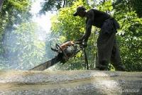 chainsaw operator