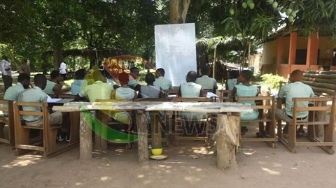 Students of Shai Senior High Technical School learning under a tree