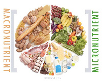 Globally, up to 2 billion people do not get enough essential vitamins and minerals from food