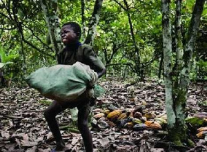 The EU says it's working with the Employment Ministry to tackle the issue of child labour