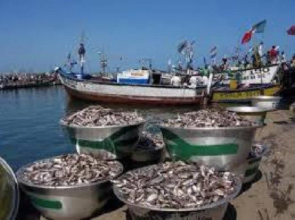 Ghanaian workers report alleged abuses on Chinese-owned fishing vessels