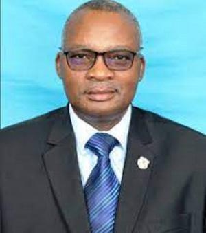 Tanzanian's defence and national service minister, Elias Kwandikwa