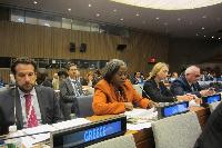 Ambassador Martha Ama Akyaa Pobee