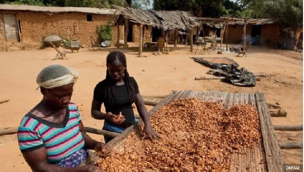 The cocoa farmers' welfare fund concept was hoped to provide affordable loans and financial support