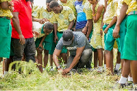 The project aims to make Ghana 'green' again