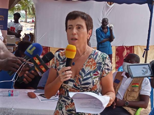 Galamsey destroys 5,000 hectares of cocoa farms as EU threatens to ban Ghana cocoa