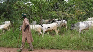 Association of Cattle Farmers says the demarcation will end crop farmers and herdsmen clash