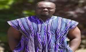 Michael Ebo Amoah, Sustainable development expert
