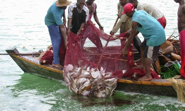 Gov\'t launches project to fill gaps within the fishery