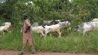 Adaklu Waya residents demonstrated against the activities of fulani herds men is the area