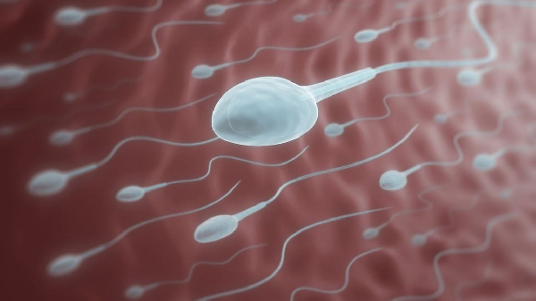 Egg and sperm donors are cashing in from a growing business