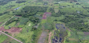 An aerial view of the ancient Maya Aguada Fenix site in Mexico's Tabasco state