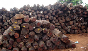 The timber industry is the largest foreign exchange earner after minerals