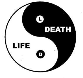 Death Creative Life