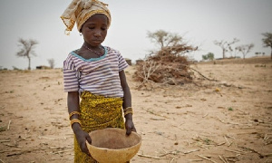Child marriage have taken a lot of girls out of school