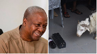 President Mahama and the ram donated to him for his victory celebration