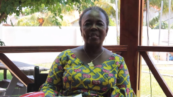 Anti-LGBTQI+ Bill: NDC's position anti-social - Prof Emerita Abena Takyiwaa