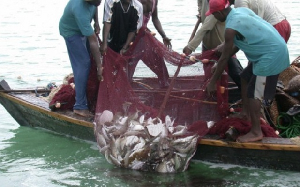Budget Consultant urges CSOs to track budgetary allocations to fisheries sector