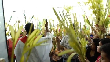 Today is palm Sunday